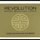 paleta farduri revolution london elefant